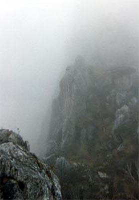 2_4_fog