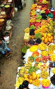 116_0807sm_fruit