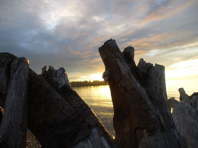 original - Parksville beach